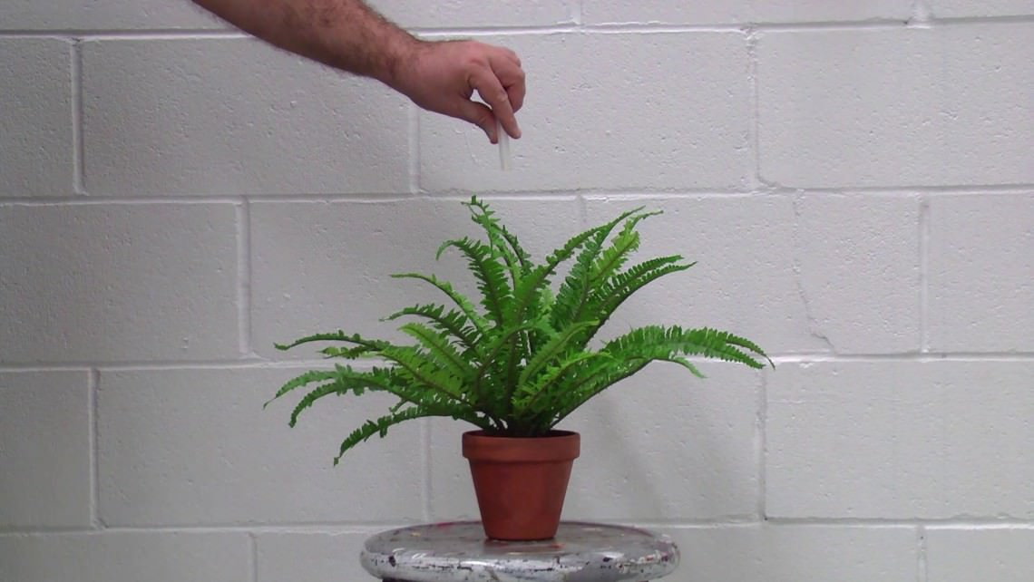 - To Drug an Artificial Plant