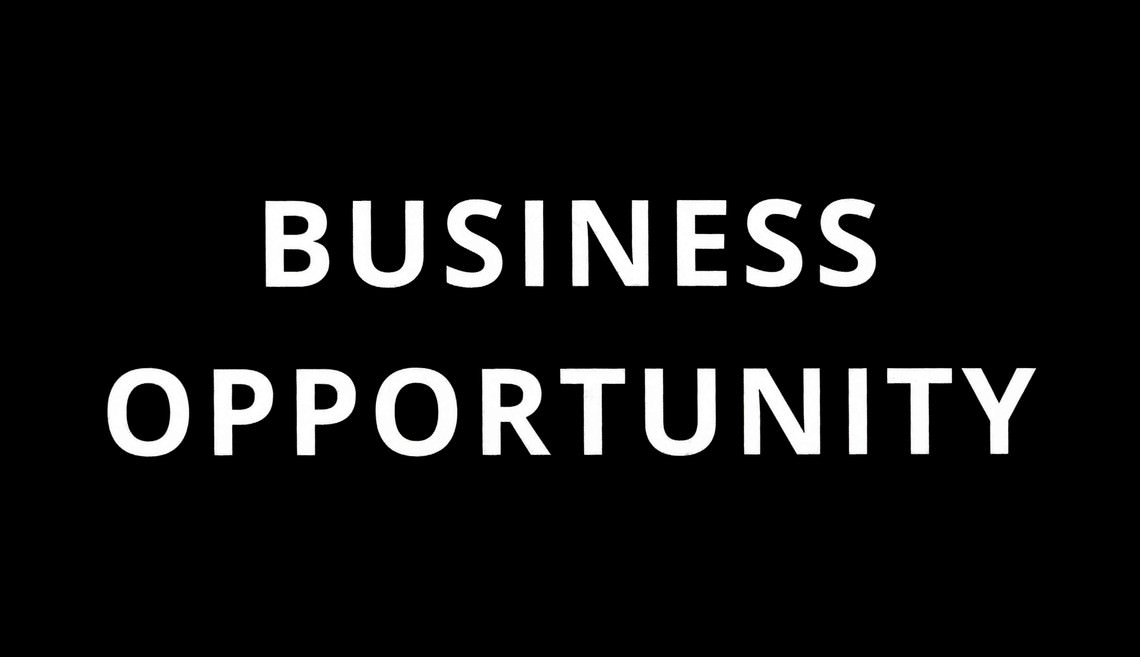 - BUSINESS OPPORTUNITY